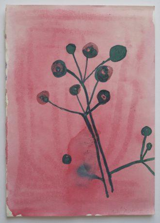 Plant 2006 aquarel op papier 30 x 21 cm