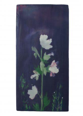 Malve encaustiek op eikenhout 37 x 18 cm