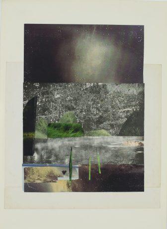 Into the woods 2016 44 x 30 cm