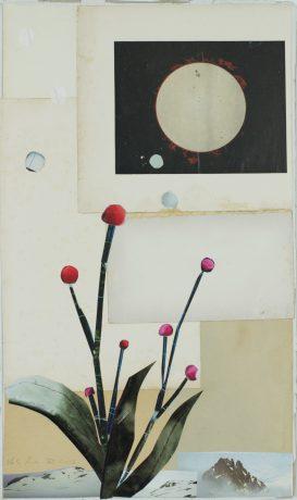 collage z.T. 2016  50 x 29 cm