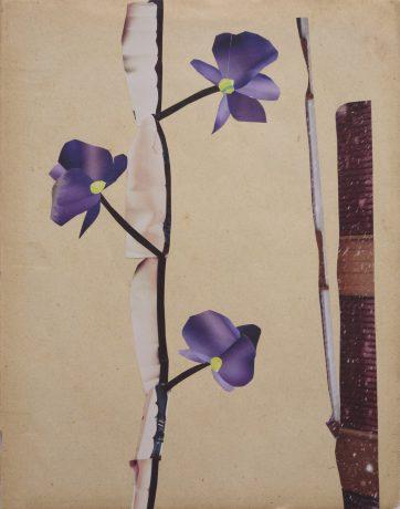 Orchidee 2014 collage op antiek papier 28 x 22,5 cm