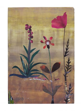 De Botanisten 2018 59 x 41 cm collage on painted paper