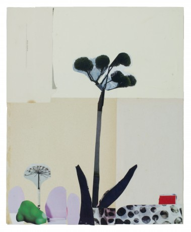 Schermbloem 2015  31 x 25 cm