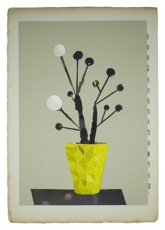 Stravinsky Plant 2014 35 x 26 cm. -  collection Triodos Bank