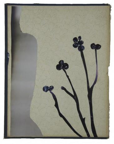 Wilde Bessen 2013  29,5 x 23 cm