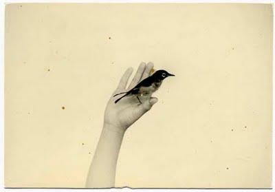Masao Yamamoto - collectie Otto Schaap