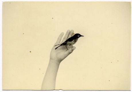 Masao Yamamoto #954, Nakazora 2002, gelatine zilverdruk, collectie Otto L. Schaap