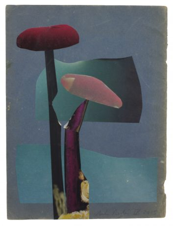 Anke Roder - Funghi collage, cover Tijdschrift Speling Herfst