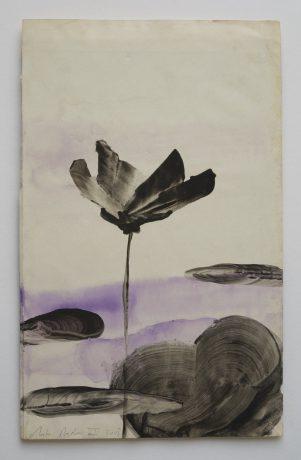 Lotus II 2008 inkt en aquarel op antiek papier 28,5 x 18 cm