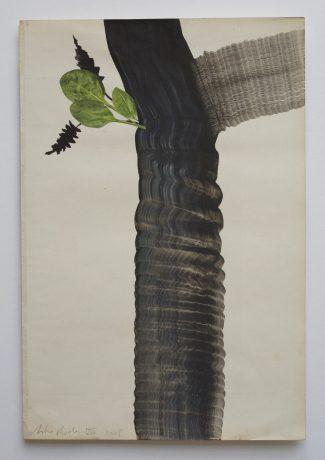 Boom 2008 inkt en collage op antiek papier 28,5 x 19 cm