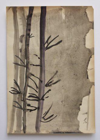 Bamboe 2008 inkt en aquarel op antiek papier 28 x 19,5 cm