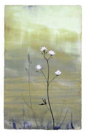 Veldbloem  81 x 51 cm  encaustiek op houtpaneel