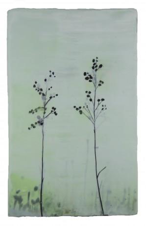 Grassen 40 x 25 cm encaustiek op hout