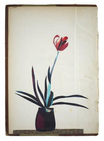Amaryllis 2014  29 x 20,5 cm