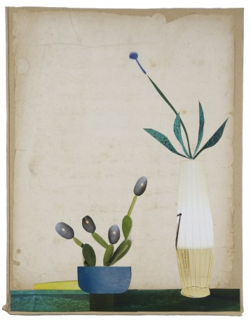 Kamerplanten 2014 38 x 29 cm. -  collection Triodos Bank