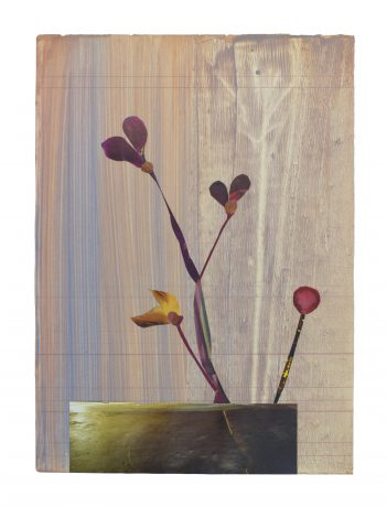 Vlinderbloemen 2018 41 x 29,5 cm collage on painted paper