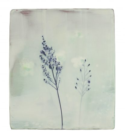 Grassen 21,5 x 19 cm encaustiek op hout