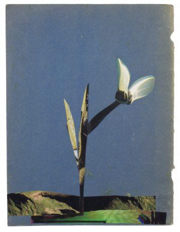 Anke Roder- collage afbeelding cover tijdschrift Speling