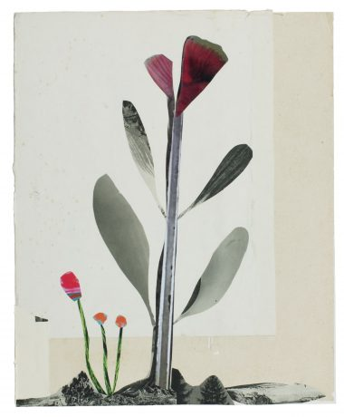 Anke Roder - Vlinderbloem collage, cover tijdschrift Speling zomer