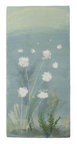 Arctic Cotton 36,5 x 17,5 cm encaustic & oilpaint on oakwood